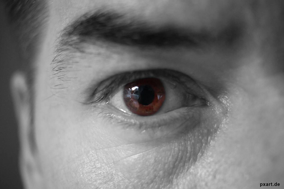 Auge Startseite